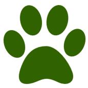Animals, pets community soft