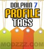 Profile Tags