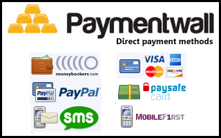 Image result for paymentwall images