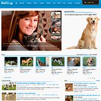 dodling.com